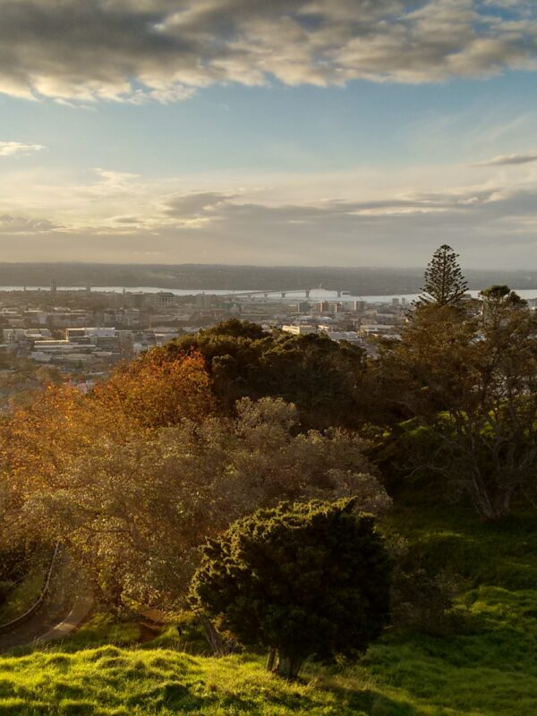 Top attractions of Omaro and Auckland, New Zealand